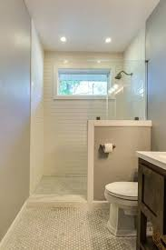 shower stall lighting. Shower Stall Led Lighting Tub To Conversion Zillow Ideas T