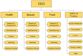 Organizational Domain Chart Common Organizational Structures Principles Of Management