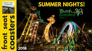 summer nights at busch gardens tampa bay 2018 coasters beer yahtzee