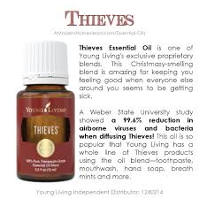 Thieves Oil Dilution Thieves Young Living Essential Oil A Modern Homestead
