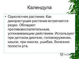 Календула лекарственное растение реферат tc pozhsnab ru Лекарственное растение календула