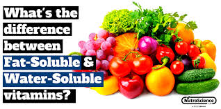 Water Soluble And Fat Soluble Vitamins Chart Whats The Difference Between Fat Soluble And Water Soluble