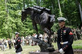 Red mare Sgt. Reckless, Korean War hero, finally gets recognition | Books  and Literature | siouxcityjournal.com