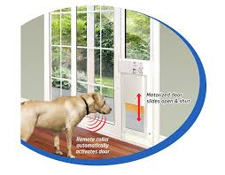 best dog door for wall for those discriminating pet owners who need a sliding glass patio best dog door for wall