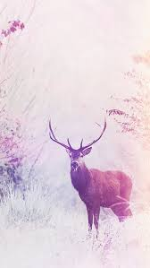 Iphone wallpaper glass animals Artwork Deer Wallpaper Iphone Cell Phone Wallpapers Anime Wallpaper Glass Animals Wallpaper Inspirational Deer Wallpaper Iphone Cell