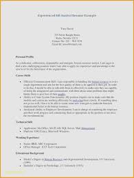 awesome resumes. Examples Of Professional Resumes Awesome Resume Outline Free Awesome
