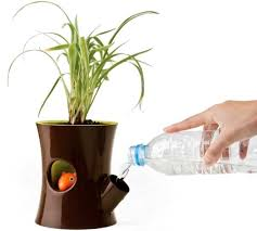 Log And Squirrel Flowerpot: Self Watering Plants Pot By Qualy Design