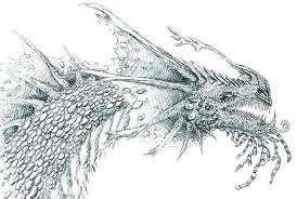 Printable Dragon Coloring Pages For Adults Free Komodo Realistic