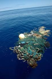 ocean by size second garbage patch the size of texas discovered in pacific ocean