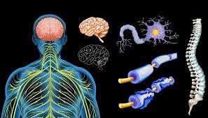 """La Esclerosis Múltiple tiene unas expectativas y esperanza de vida geniales  que se acercan casi a la normalidad"""" - Doctor Mosqueira"""