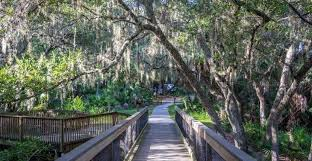 Oscar Scherer State Park | Camping & Events | Must Do Visitor Guides