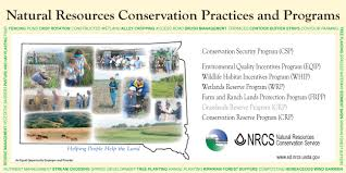 essay on conservation of natural resources conservation and natural resources