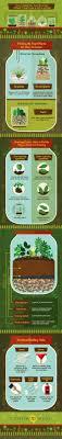 How To Make A Plant Terrarium Infographic Cuisiner Et Recettes Construire Topic