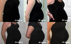 28 Weeks Pregnant Growth Chart Www Bedowntowndaytona Com
