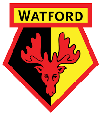Image result for WATFORD logo