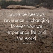 best on gratitude images gratitude quotes gratitude bestows reverence changing forever how we experience life and the world