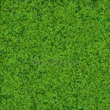 Drawn lawn texture Pencil and in color drawn lawn texture