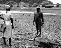 Resultado de imagem para seca de 1915