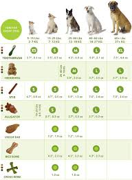 Which Size Whimzees Is Right For Your Dog Check Out Our