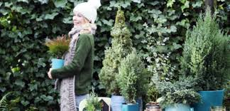 Vrolijk Je Tuin Op Met Winterplanten Praxis Blog