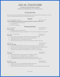 20 Inspirational Resume Template Office Ncgardenucsd Com
