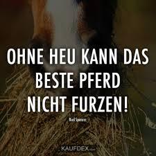At Kaufdex Lustige Sprüche Ohne Heu Kann Das Beste Pferd Nicht