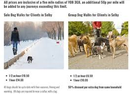 1 Of 3 Price Lists Menus Canine To Five Dog Walking Pet
