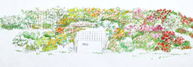 Small Picture Designing a Hillside Rose Garden Part 1 Rose Notes