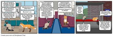 3 Types Of Passive Transport Passive Transport Comic Strip Storyboard By Droberts37
