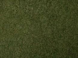 wild grass texture. Wild Grass Foliage Wild Grass Texture W