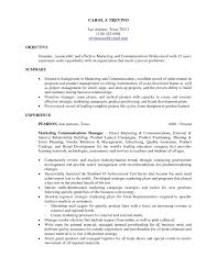 Luxury Resume Objective Statements Resumes Sample Objectives For