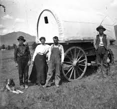 Small Picture 80 best sheep Wagon images on Pinterest Gypsy wagon Shepherds