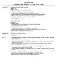 Resume For Teller Position Lead Teller Resume Samples Velvet Jobs