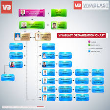 Company Organization Chart Vivablast