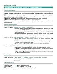 Professional Executive Resume Template Jaw Dropping Word