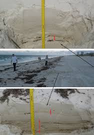 florida oil spill claims tampa news tip line university of south florida