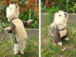Dog Costume Patterns Custom Simplicity 48 Dog Clothes Tuxedo Costume Pattern Dog Costume