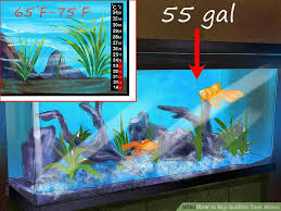 How To Buy Goldfish Tank Mates 13 Steps With Pictures
