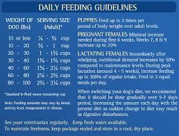 Zignature Feeding Chart Zignature Trout Salmon Meal Limited Ingredient Formula Grain Free Dry Dog Food 4 Lb Bag