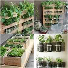 apartment gardening ideas apartment patio garden gardening without a garden 10