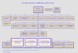 Border Patrol Organization Chart Related Keywords