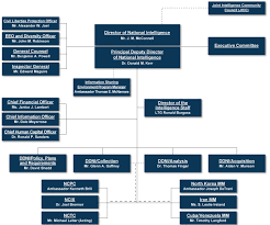 File Dni Org Chart Jpg Wikipedia