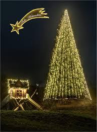 Weihnachtsstern Nordrach Foto Bild Stillleben Projekte