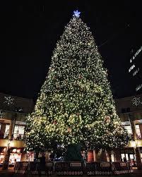 faneuil hall christmas tree lighting. Faneuil Hall Marketplace, Downtown Christmas Tree Lighting