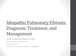 Idiopathic Pulmonary Fibrosis: Diagnosis, Treatment, and Management ISCHR  Conference March 5, 2016 Wendi R Mason, MSN, ACNP-BC Program Director  Interstitial. - ppt download