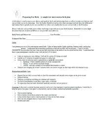My Birth Plan Template My Birth Plan Template Skincense Co