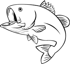 Small Picture bass fish coloring pages Coolagenet