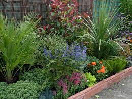 Small Picture How to Create Low Maintenance Garden front yard landscaping ideas