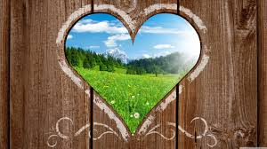 Love Nature Ultra Hd Desktop Background Wallpaper For 4k Uhd