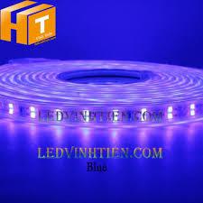 Tuy hòa phú yên: Bán đèn led dây 2835 led đôi màu xanh dương giá rẻ